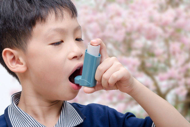 Asthma Triggers and Treatment Options